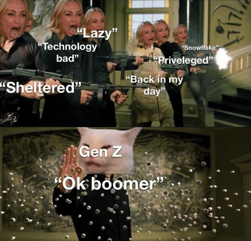 """gen: Lazy""""  Technology  """"Snowflake""""  bad""""  Priveleged  """"Back in my  """"Sheltered""""  day""""  Gen Z  Ok boomer""""  95  14AE"""