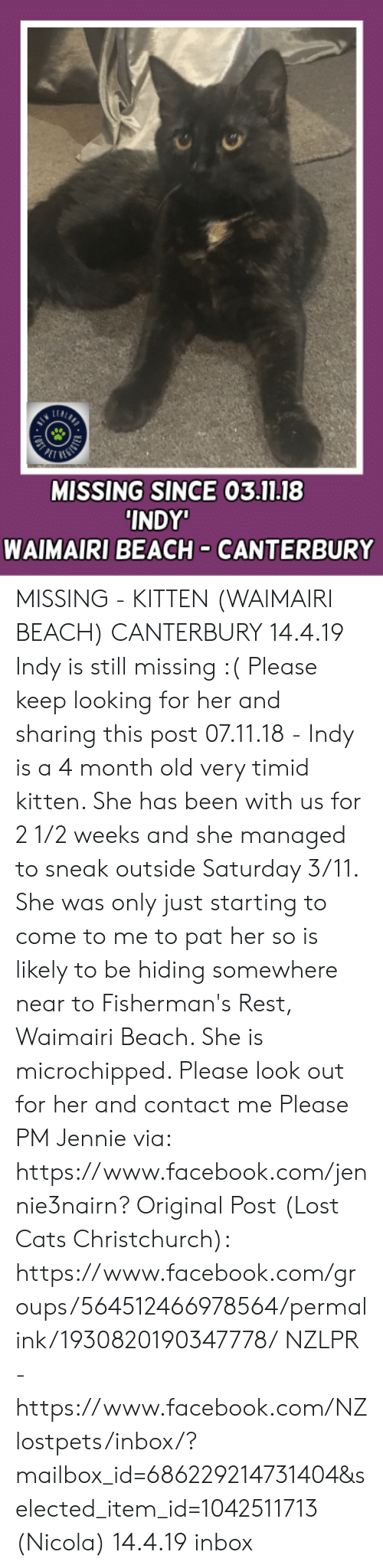 Cats, Facebook, and Memes: LEA  MISSING SINCE 03.11.18  INDY  WAIMAIRI BEACH CANTERBURY MISSING - KITTEN (WAIMAIRI BEACH) CANTERBURY  14.4.19 Indy is still missing :(  Please keep looking for her and sharing this post 07.11.18 - Indy is a 4 month old very timid kitten. She has been with us for 2 1/2 weeks and she managed to sneak outside Saturday 3/11. She was only just starting to come to me to pat her so is likely to be hiding somewhere near to Fisherman's Rest, Waimairi Beach. She is microchipped. Please look out for her and contact me  Please PM Jennie via: https://www.facebook.com/jennie3nairn?  Original Post (Lost Cats Christchurch): https://www.facebook.com/groups/564512466978564/permalink/1930820190347778/  NZLPR - https://www.facebook.com/NZlostpets/inbox/?mailbox_id=686229214731404&selected_item_id=1042511713    (Nicola)  14.4.19 inbox