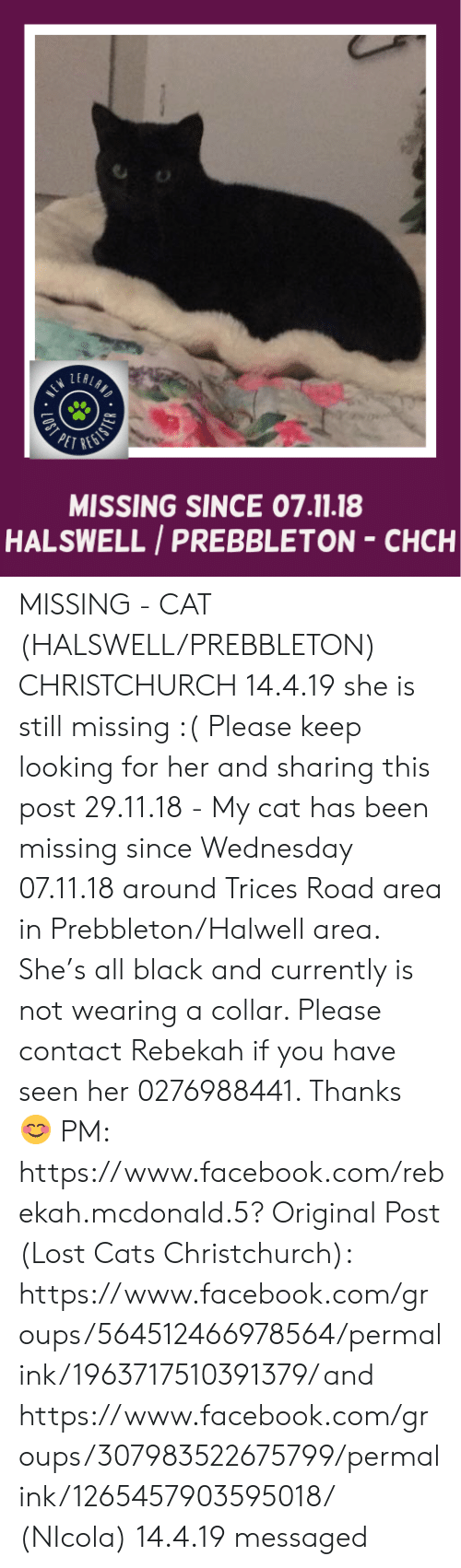 Cats, Facebook, and Memes: LEA  PETR  MISSING SINCE 07.11.18  HALSWELL /PREBBLETON-CHCH MISSING - CAT (HALSWELL/PREBBLETON) CHRISTCHURCH  14.4.19 she is still missing :(  Please keep looking for her and sharing this post 29.11.18 - My cat has been missing since Wednesday 07.11.18  around  Trices Road area in Prebbleton/Halwell area. She's all black and currently is not wearing a collar.   Please contact Rebekah if you have seen her 0276988441. Thanks 😊 PM: https://www.facebook.com/rebekah.mcdonald.5?  Original Post (Lost Cats Christchurch): https://www.facebook.com/groups/564512466978564/permalink/1963717510391379/ and https://www.facebook.com/groups/307983522675799/permalink/1265457903595018/    (NIcola)  14.4.19 messaged