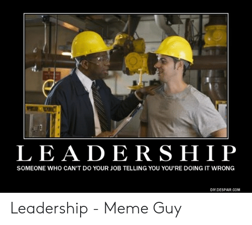 Funny Leadership Meme: LEADERSHIP  SOMEONE WHO CAN'T DO YOUR JOB TELLING YOU YOU'RE DOING IT WRONG  DIY.DESPAIR.COM Leadership - Meme Guy