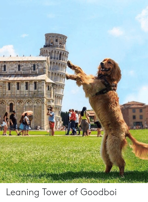 Leaning: Leaning Tower of Goodboi