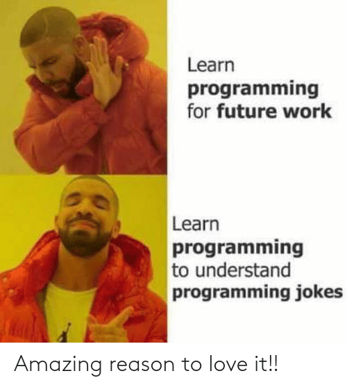 To Love: Learn  programming  for future work  Learn  programming  to understand  programming jokes Amazing reason to love it!!