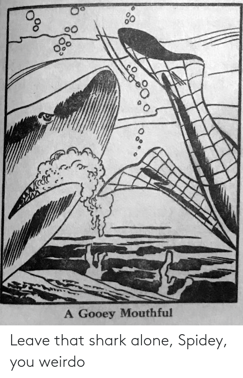 Being alone: Leave that shark alone, Spidey, you weirdo