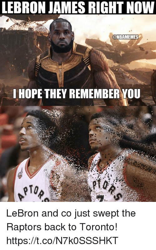 LeBron James, Memes, and Lebron: LEBRON JAMES RIGHT NOW  @NBAMEMES  I HOPE THEY REMEMBER YOU  pTo LeBron and co just swept the Raptors back to Toronto! https://t.co/N7k0SSSHKT