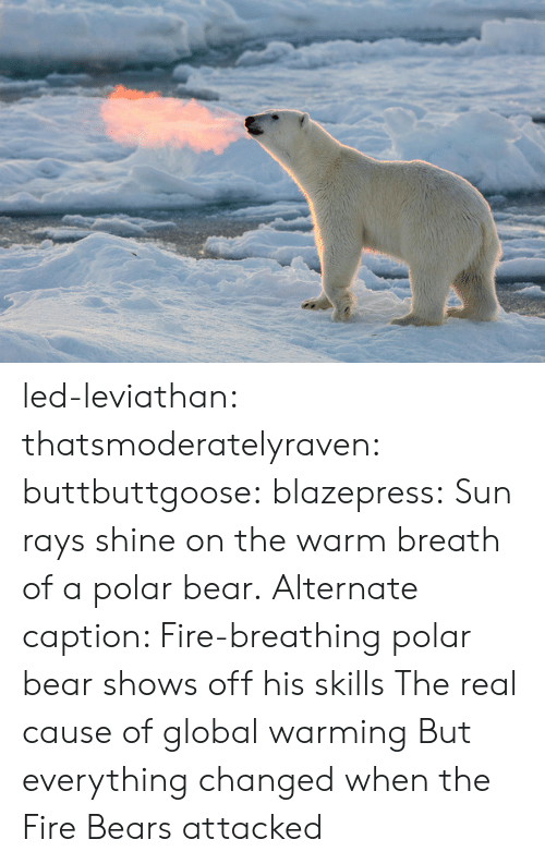 Changed When: led-leviathan:  thatsmoderatelyraven: buttbuttgoose:  blazepress:  Sun rays shine on the warm breath of a polar bear.  Alternate caption: Fire-breathing polar bear shows off his skills  The real cause of global warming   But everything changed when the Fire Bears attacked