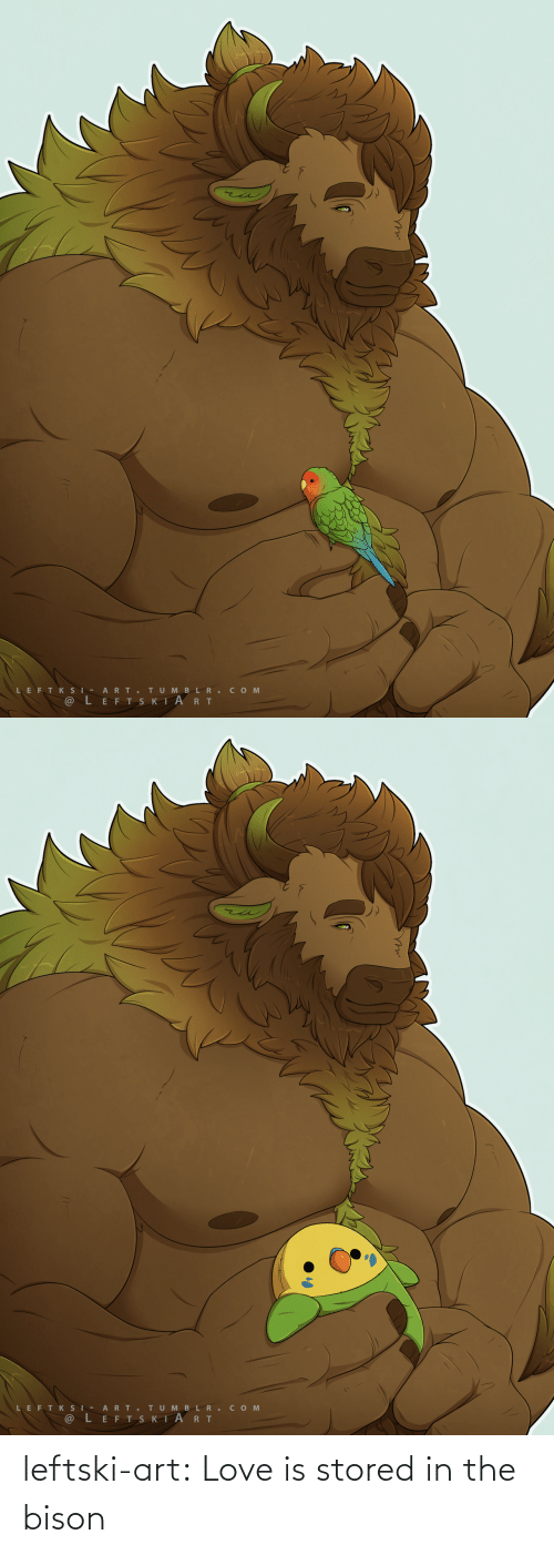 Love Is: leftski-art:   Love is stored in the bison