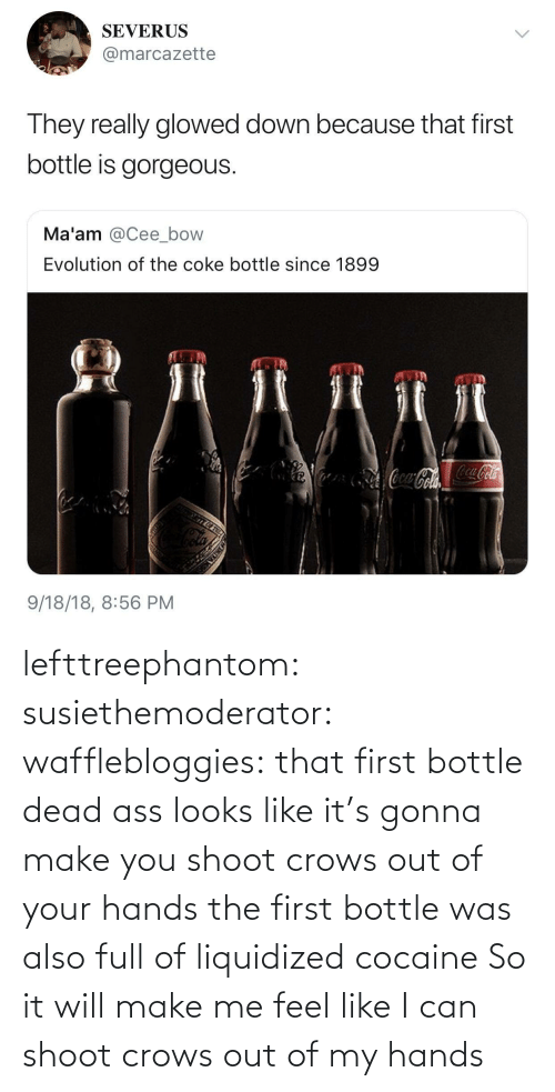 hands: lefttreephantom: susiethemoderator:  wafflebloggies: that first bottle dead ass looks like it's gonna make you shoot crows out of your hands the first bottle was also full of liquidized cocaine   So it will make me feel like I can shoot crows out of my hands