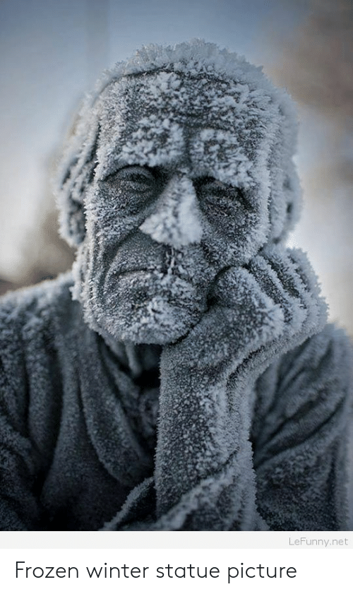 Lefunny: LeFunny.net Frozen winter statue picture