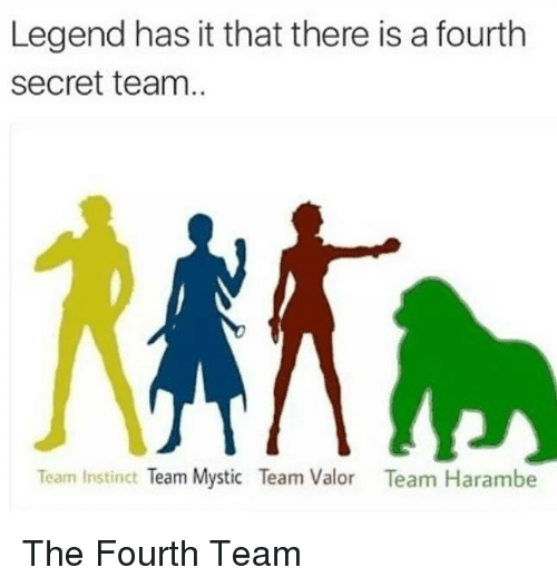 Team Instinct: Legend has it that there is a fourth  Secret team.  Team Instinct  Team Mystic Team Valor  Team Harambe The Fourth Team