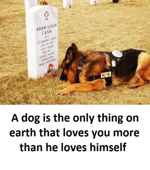 marinate: LEIGH  ADAM CANN  Us MARIN  cosies  N 25  HEART  K-9  A dog is the only thing on  earth that loves you more  than he loves himself