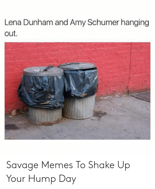 amy: Lena Dunham and Amy Schumer hanging  out Savage Memes To Shake Up Your Hump Day