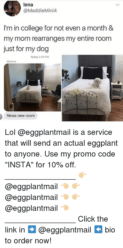 """eggplant: lena  @MaddieMini4  I'm in college for not even a month &  my mom rearranges my entire room  just for my dog  Today 2:24 PM  Mommy  Ninas new room Lol @eggplantmail is a service that will send an actual eggplant to anyone. Use my promo code """"INSTA"""" for 10% off. ________________ 👉🏼 @eggplantmail 👈🏼 👉🏼 @eggplantmail 👈🏼 👉🏼 @eggplantmail 👈🏼 ________________ Click the link in ➡️ @eggplantmail ⬅️ bio to order now!"""