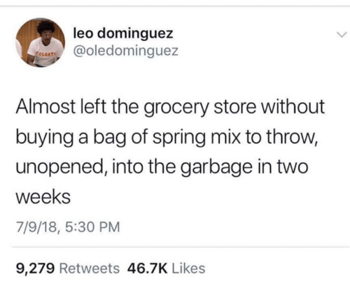 Spring, Humans of Tumblr, and Leo: leo dominguez  oledominguez  OLGAT  Almost left the grocery store without  buying a bag of spring mix to throw,  unopened, into the garbage in two  weeks  7/9/18, 5:30 PM  9,279 Retweets 46.7K Likes
