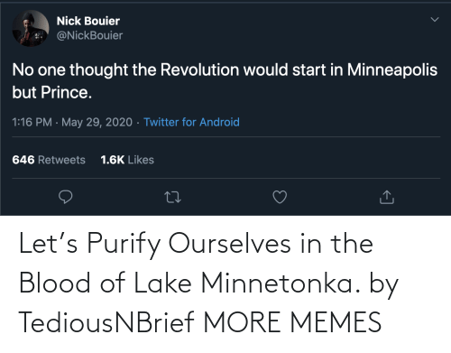 blood: Let's Purify Ourselves in the Blood of Lake Minnetonka. by TediousNBrief MORE MEMES