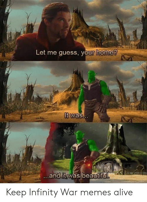 Alive, Beautiful, and Memes: Let me guess, your home?  It was..  ...and it was beautiful Keep Infinity War memes alive