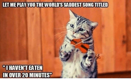 Memes, 🤖, and Let Me: LET ME PLAYYOUTHEWORLD'S SADDEST SONGTITLED  O HAVENT EATEN  IN OVER 20 MINUTES""