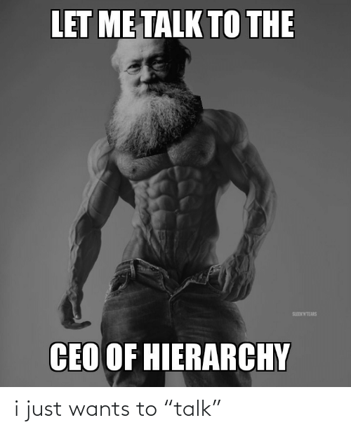 "Ceo, Hierarchy, and Just: LET ME TALK TO THE  SLEEKWTEARS  CEO OF HIERARCHY i just wants to ""talk"""