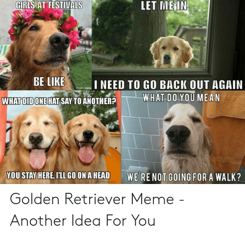 Be Like, Girls, and Head: LET MEI  GIRLS AT FESTIVALS  BE LIKE  I NEED TO GO BACK OUT AGAIN  WHAT DOYOU MEAN  WHAT DID ONE HAT SAY TO ANOTHER?  YOU STAY HERE,FLLGOONA HEAD  WE RE NOT GOING FOR A WALK? Golden Retriever Meme - Another Idea For You