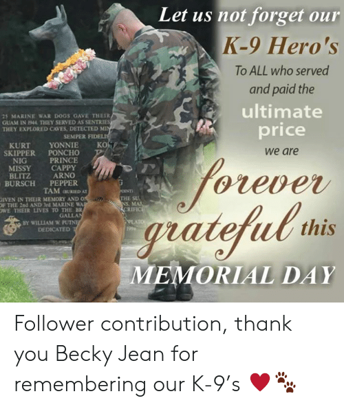 Iven: Let us not forget our  K-9 Hero's  To ALL who served  and paid the  ultimate  25 MARINE WAR DOGS GAVE THEIR  GUAM IN 1944 THEY SERVED AS SENTRIES  THEY EXPLORED CAVES DETECTED MI  price  SEMPER FI  KURT YONNIE KO  SKIPPER PONCHO  NIG  MISSY CAPPY  BLITZ  BURSCH PEPPER  we are  PRINCE  ARNO  Gleve  TAMRIED AT  THE SU  NS, MA  RIFIC  İVEN İN THEIR MEMORY AND O  OF THE 2nd AND 3rd MARINE WA  OWE THEIR LIVES TO THE BR  GALLA  BY WILLIAM W PU  DEDICATED  gratefub ths  MEMORIAL DAY Follower contribution, thank you Becky Jean for remembering our K-9's ♥️🐾