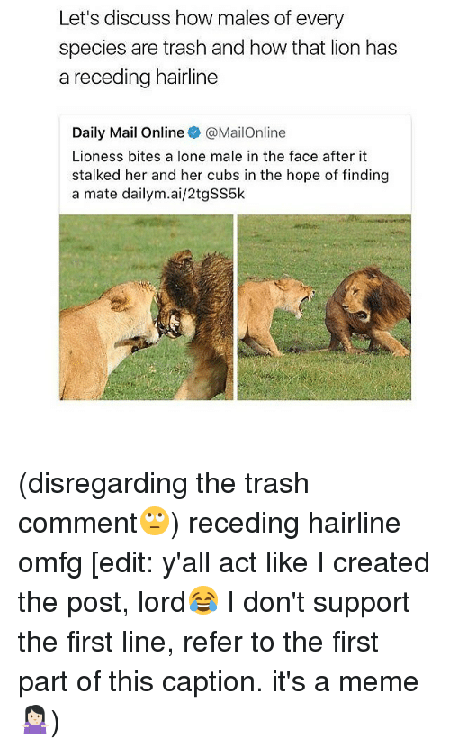 Referance: Let's discuss how males of every  species are trash and how that lion has  a receding hairline  Daily Mail Online @MailOnline  Lioness bites a lone male in the face after it  stalked her and her cubs in the hope of finding  a mate dailym.ai/2tgSS5k (disregarding the trash comment🙄) receding hairline omfg [edit: y'all act like I created the post, lord😂 I don't support the first line, refer to the first part of this caption. it's a meme🤷🏻♀️)