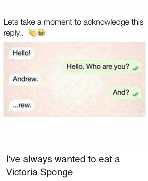 Hello, Memes, and 🤖: Lets take a moment to acknowledge this  reply  Hello!  Hello. Who are you?  Andrew.  And?  ...rew. I've always wanted to eat a Victoria Sponge