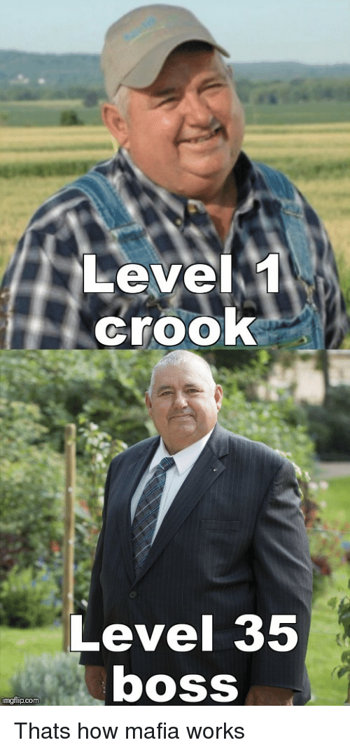 How, Mafia, and Com: Level1  crooK  Level 35  boss  imgfilip.com Thats how mafia works