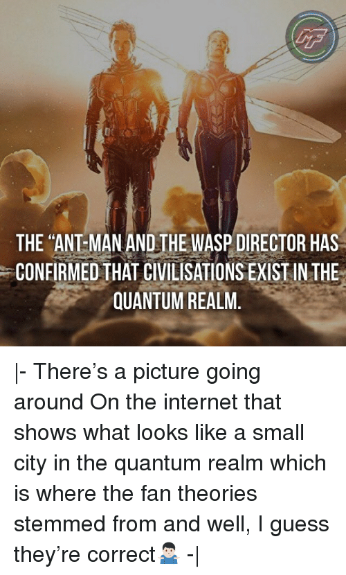 """wasp: LF  THE """"ANT MAN AND THE WASP DIRECTOR HAS  CONFIRMED THAT CIVILISATIONS EXIST IN THE  QUANTUM REALM. 