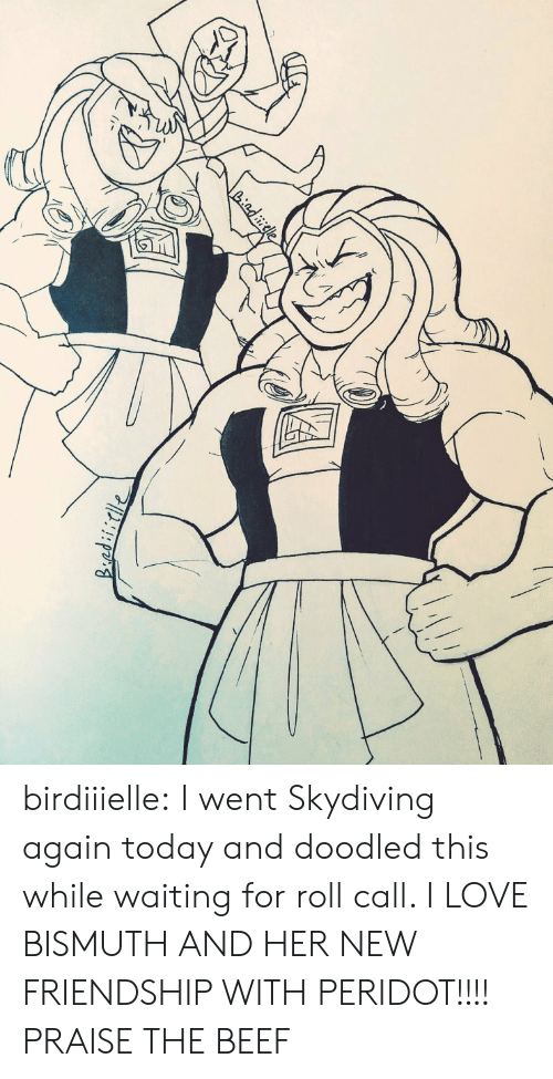 Beef: Liadiele birdiiielle:  I went Skydiving again today and doodled this while waiting for roll call. I LOVE BISMUTH AND HER NEW FRIENDSHIP WITH PERIDOT!!!!  PRAISE THE BEEF