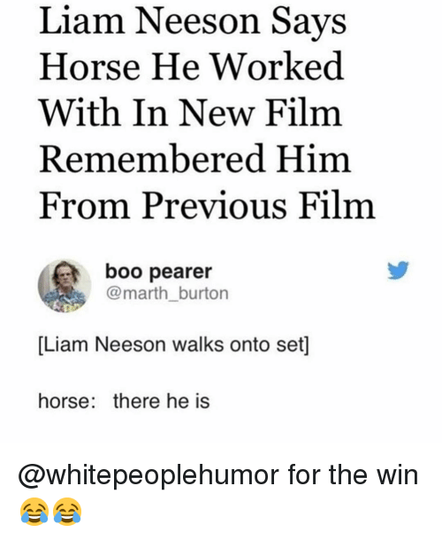 Boo, Liam Neeson, and Memes: Liam Neeson Savs  Horse He Worked  With In New Film  Remembered Him  From Previous Film  boo pearer  @marth_burton  [Liam Neeson walks onto set]  horse: there he is @whitepeoplehumor for the win 😂😂