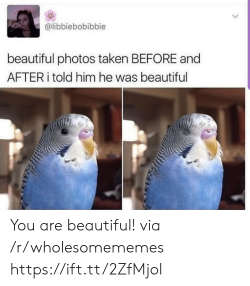 Beautiful, Taken, and Photos: @libbiebobibbie  beautiful photos taken BEFORE and  AFTER told him he was beautiful You are beautiful! via /r/wholesomememes https://ift.tt/2ZfMjol