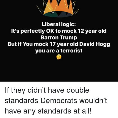 Logic, Memes, and Trump: Liberal logic:  It's perfectly OK to mock 12 year old  Barron Trump  But if You mock 17 year old David Hogg  you are a terrorist If they didn't have double standards Democrats wouldn't have any standards at all!