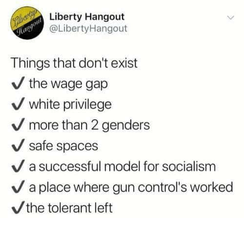 2 Genders: Liberty Hangout  @LibertyHangout  ol  Things that don't exist  / the wage gap  white privilege  more than 2 genders  safe spaces  V a successful model for socialism  / a place where gun control's worked  the tolerant left
