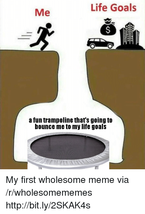 life goals: Life Goals  Me  a fun trampoline that's going to  bounce me to my life goals My first wholesome meme via /r/wholesomememes http://bit.ly/2SKAK4s
