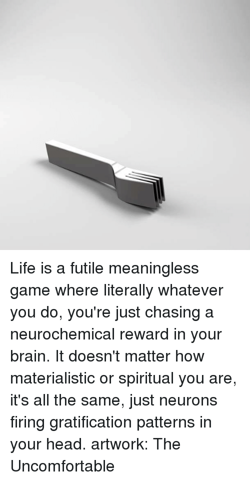 Brains, Brain, and Chase: Life is a futile meaningless game where literally whatever you do, you're just chasing a neurochemical reward in your brain. It doesn't matter how materialistic or spiritual you are, it's all the same, just neurons firing gratification patterns in your head.  artwork: The Uncomfortable