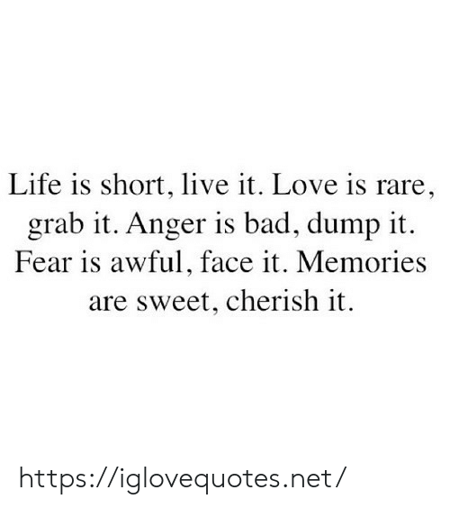 cherish: Life is short, live it. Love is rare,  grab it. Anger is bad, dump it  Fear is awful, face it. Memories  are sweet, cherish it https://iglovequotes.net/