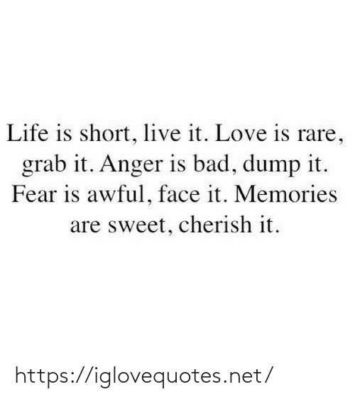 Bad, Life, and Love: Life is short, live it. Love is rare,  grab it. Anger is bad, dump it.  Fear is awful, face it. Memories  are sweet, cherish it. https://iglovequotes.net/