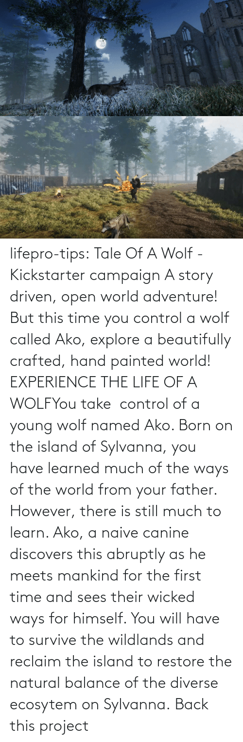 Control: lifepro-tips: Tale Of A Wolf - Kickstarter campaign   A story driven, open world adventure! But this time you control a wolf  called Ako, explore a beautifully crafted, hand painted world! EXPERIENCE THE LIFE OF A WOLFYou take  control of a young wolf named Ako. Born on the island  of Sylvanna, you have learned much of the ways of the world from your  father. However, there is still much to learn. Ako, a naive canine  discovers this abruptly as he meets mankind for the first time and sees  their wicked ways for himself. You will have to survive the wildlands  and reclaim the island to restore the natural balance of the diverse  ecosytem on Sylvanna.   Back this project