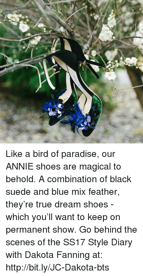 like a bird: Like a bird of paradise, our ANNIE shoes are magical to behold. A combination of black suede and blue mix feather, they're true dream shoes - which you'll want to keep on permanent show. Go behind the scenes of the SS17 Style Diary with Dakota Fanning at: http://bit.ly/JC-Dakota-bts