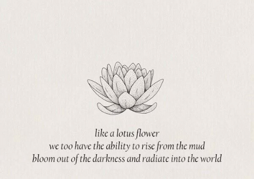 Lotus: like a lotus flower  we too have the ability to rise from the mud  bloom out of the darkness and radiate into the world
