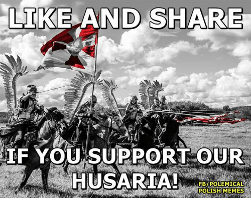Polish Meme: LIKE AND SHARE  IF YOU SUPPORT OUR  HUSARIA!  FBIPOLEMICALR  POLISH MEMES