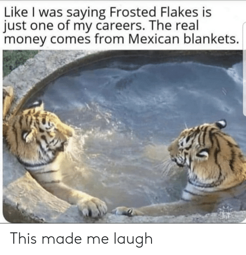 Made Me Laugh: Like I was saying Frosted Flakes is  just one of my careers. The real  money comes from Mexican blankets. This made me laugh