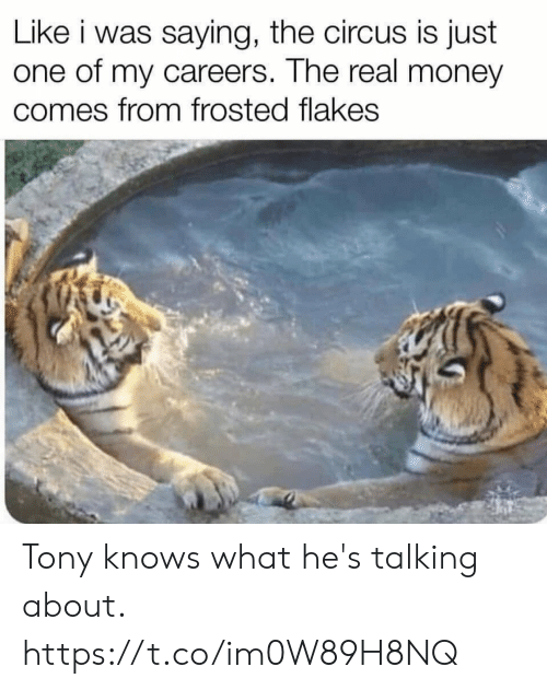 Circus: Like i was saying, the circus is just  one of my careers. The real money  comes from frosted flakes Tony knows what he's talking about. https://t.co/im0W89H8NQ