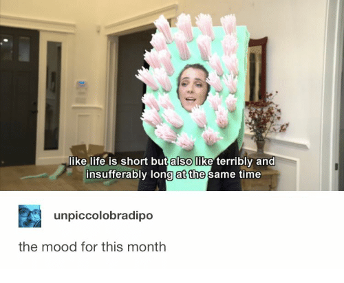 short but: like life is short but also like terribly and  insufferably long at the same time  unpiccolobradipo  the mood for this month