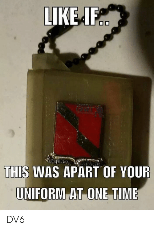 Memes, Time, and 🤖: LIKEF  THIS WAS APART OF YOUR  UNIFORM AT ONE TIME DV6