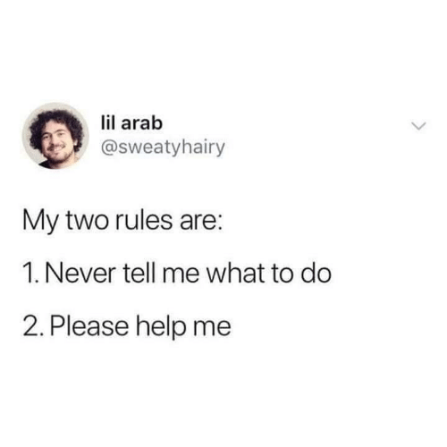Help, Arab, and Never: lil arab  @sweatyhairy  My two rules are:  1. Never tell me what to do  2. Please help me