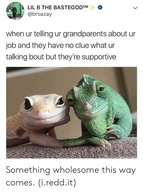 Lil B: LIL B THE BASTEGODTM  @broazay  when ur telling ur grandparents about u  job and they have no clue what ur  talking bout but they're supportive Something wholesome this way comes. (i.redd.it)