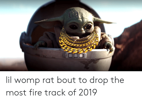 25 Best Memes About Womp Womp Memes Did you scroll all this way to get facts about womp rats? awwmemes com