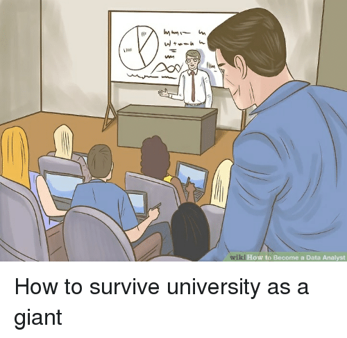 Lim Wiki How to Become a Data Analyst | Giant Meme on