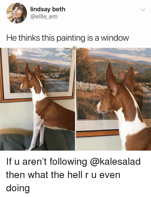 Memes, Hell, and 🤖: lindsay beth  @ellle_em  He thinks this painting is a window If u aren't following @kalesalad then what the hell r u even doing