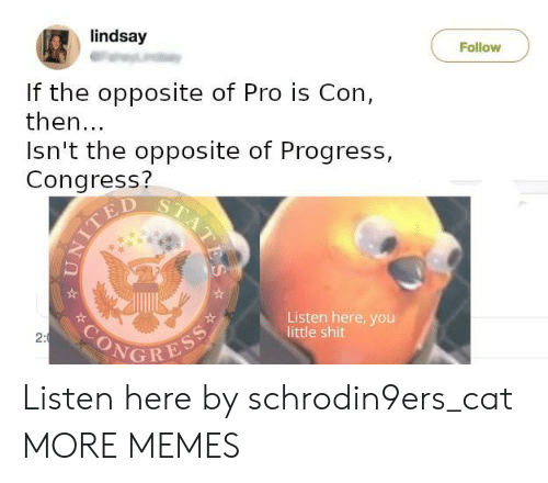 Opposite: lindsay  Follow  If the opposite of Pro is Con,  then...  Isn't the opposite of Progress,  Congress?  TED  Listen here, you  little shit  SONGRESS  2:  STATES Listen here by schrodin9ers_cat MORE MEMES